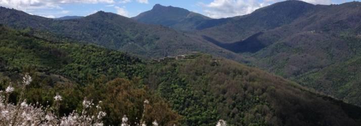 Camping Haute Corse au CAMPING DOMAINE DE PETRA PINZUTA