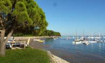 Camping Gironde au Camping Flower la Canadienne