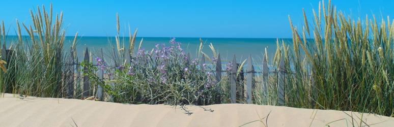 Camping Vendée *** à SAINT HILAIRE DE RIEZ Pays de La Loire