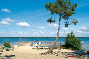 Camping Gironde au CAMPING LE TEDEY