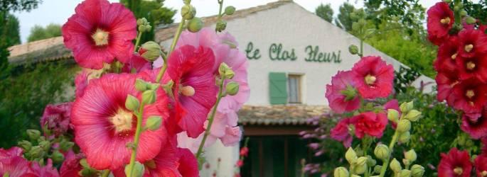 Campsite Charente-Maritime